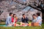 春のイベント、行事や記念日って?それぞれの意味や楽しみ方とは?