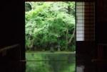 5月は京都府へ旅行!気温や服装、観光におすすめなスポットは?