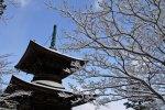 12月は京都府へ旅行!気温や服装、観光におすすめなスポットは?