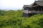 GWは京都へ旅行!イベントや混雑の状況、観光の穴場のおすすめは?
