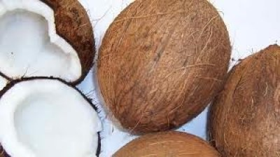 Kokos bloemsuiker