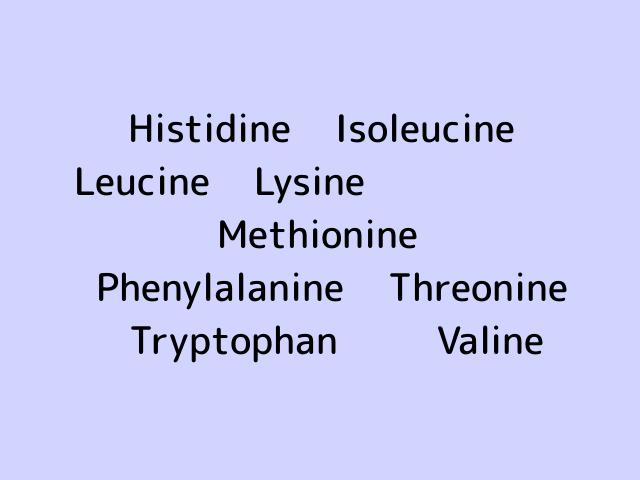 essential-amino-acid
