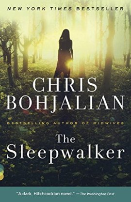 The Sleepwalker ebook epub/pdf/prc/mobi/azw3 download free
