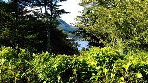箱根やすらぎの森 バリアフリー情報