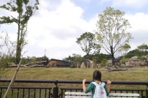 ズーラシアは施設全体傾斜地が少ない動物園
