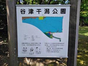 谷津干潟公園のセンターゾーン