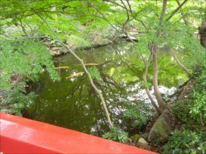 清泉池」中にかかる赤い橋が「太鼓橋