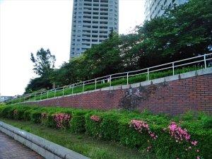 明石町河岸公園・隅田川テラス 車椅子散策ガイド