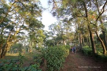 苗栗三義自在森林農地  享受自然林蔭隱密居住環境,讓你自在呼吸 輕鬆擁有靜謐氛圍!