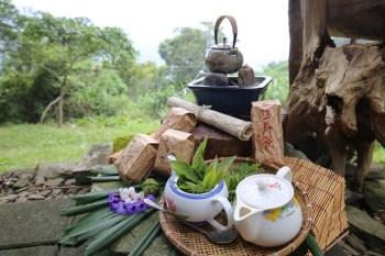 屏東寶山部落 寶山部落野趣茶席體驗,寶山拿普原生茶有機茶園,品茗茶推薦台灣原生高山茶、紅茶