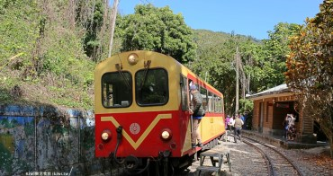 嘉義景點獨立山車站 來竹崎追阿里山森鐵漫步山城,森鐵旁品嚐在地愛玉
