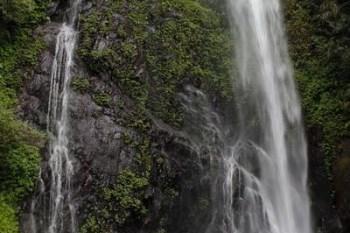 【南投埔里景點】觀音瀑布&觀音橋 @豐富生態很適合親子輕旅行一日遊走透透