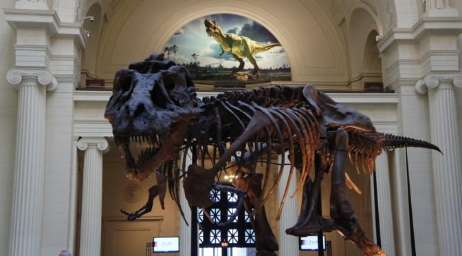 家族で一緒に学べる!シカゴの大型博物館「フィールド自然史博物館」
