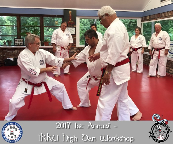 2017 1st Annual IKKU High Dan Workshop
