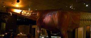 Breathing sauropod model