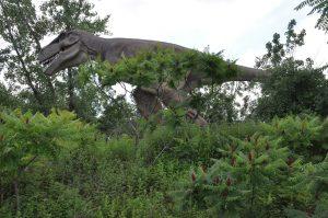 Field Station Dinosaurs: T-Rex