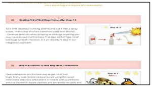 What Are Ways To Get Rid Of Bed Bugs