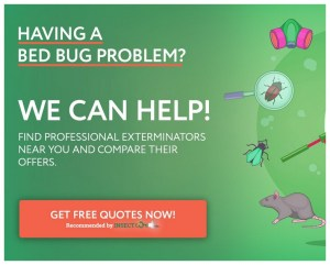 Does Heat Kill Bed Bugs Instantly