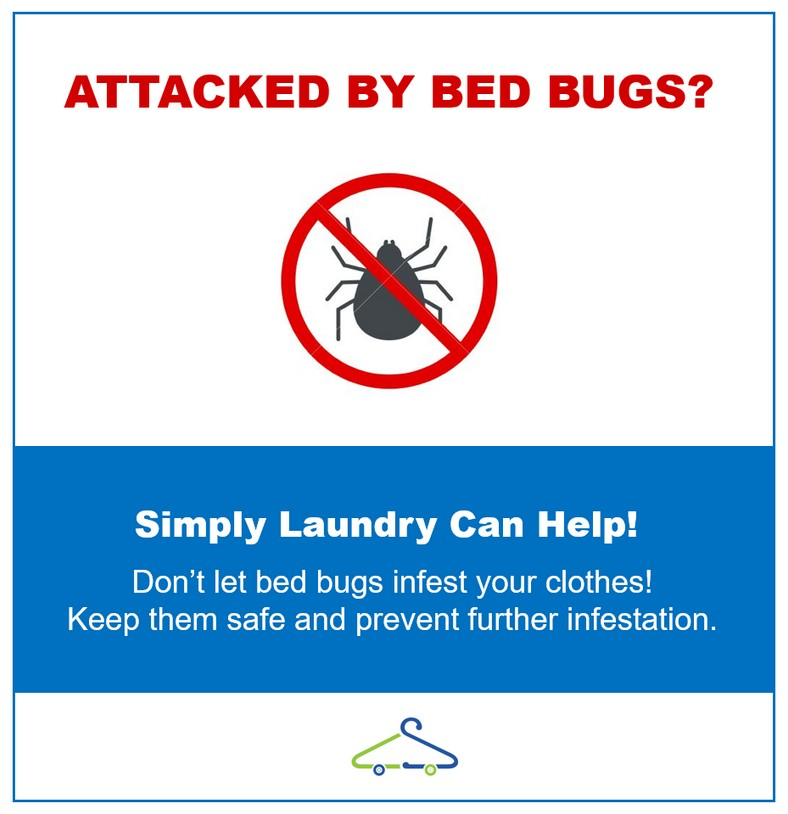 How Do You Get Bed Bugs Out Of Clothes