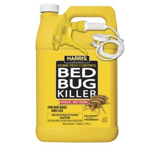 How Much Is It For An Exterminator For Bed Bugs