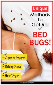 How To Treat Bed Bugs Bites At Home