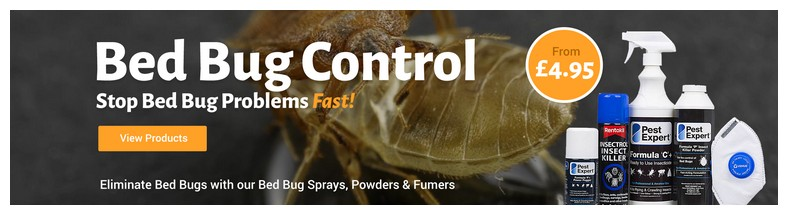 What Can Kill Bed Bugs Fast