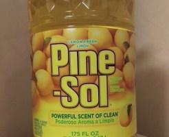 pine-sol_01