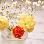週末に届くお花を飾って運気アップ!!風水を活用しよう!!
