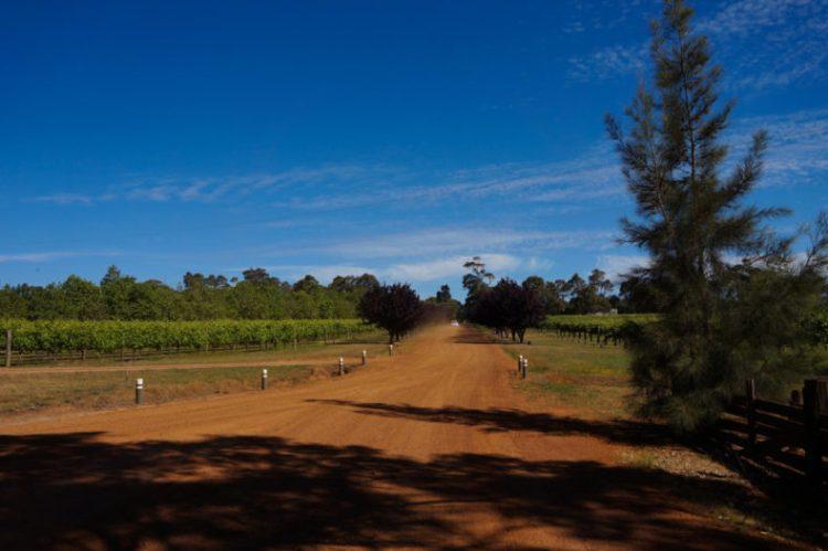 Australie-Road-Trip-Margaret-River-Wine-Lands 08.23.07