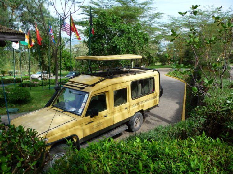 safari auto