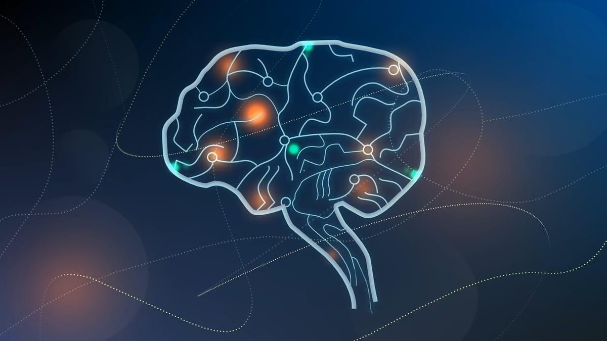 תמונה ראשית לכתבה על עובדות מדעיות על המוח האנושי. בתמונה רואים מוח על רקע כחול.