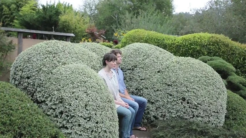 Image result for contemplating japanese garden
