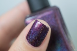 Enchanted Polish_Spring 2016_Telenovela_08