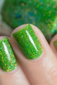 ILNP_Summer 2017 Jellies_Someday_07