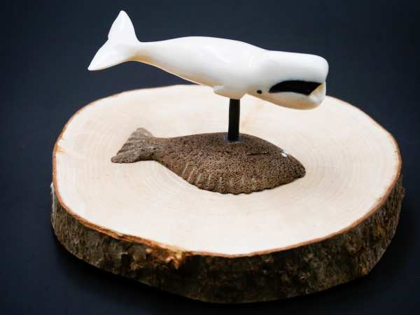 Ivory Bow head whale on halibut base
