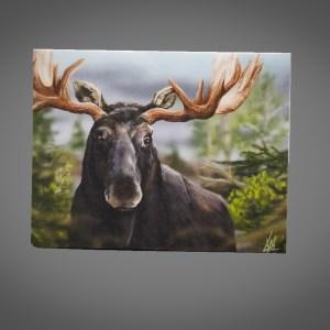 4x6 Card (Moose)
