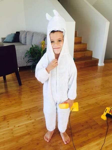 מיכאל הארנב