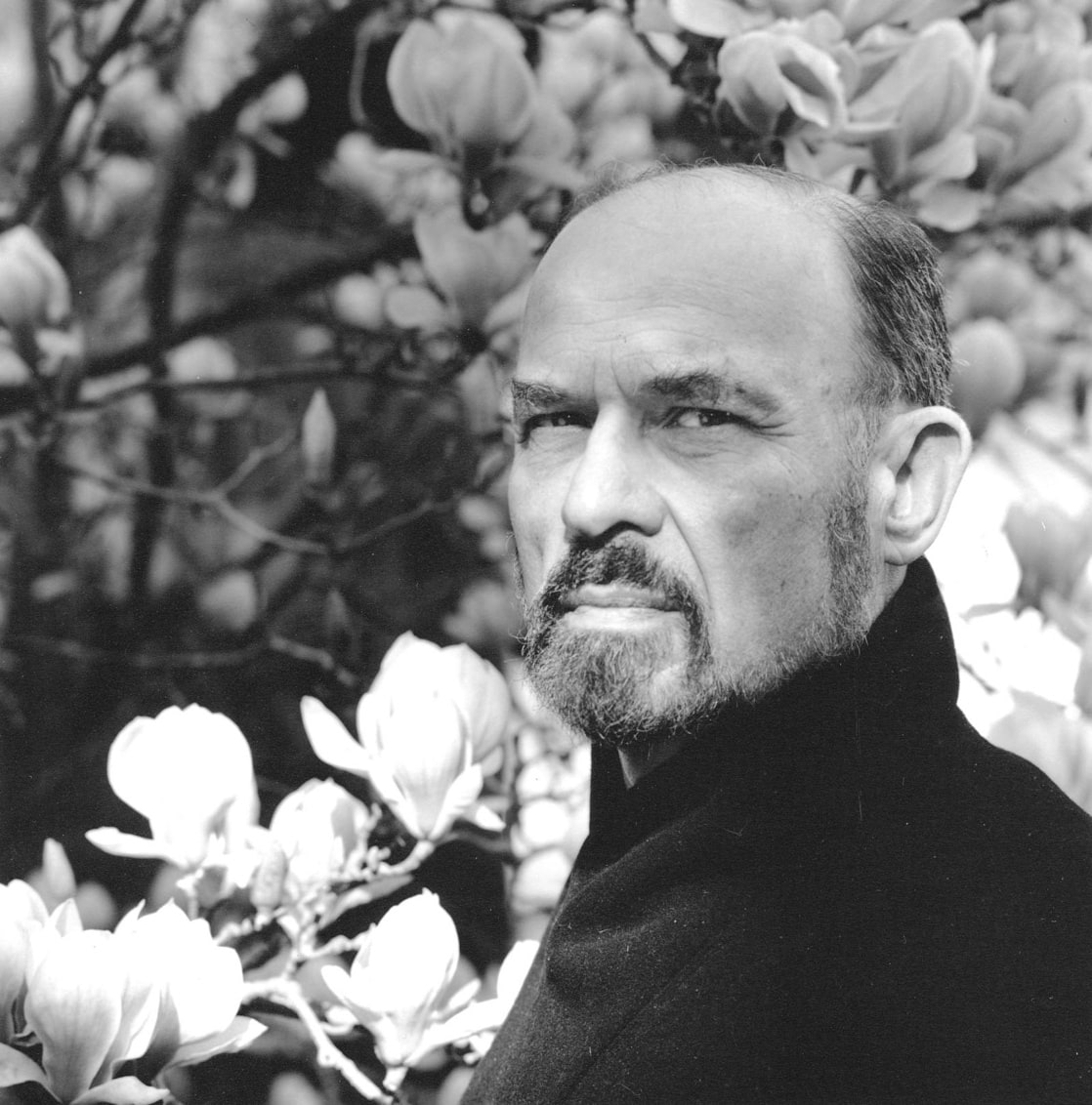 Picture Of Irvin D Yalom
