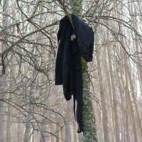 Diez ¿Típicos? Objetos Que Te Puedes Encontrar Paseando Por El Bosque...