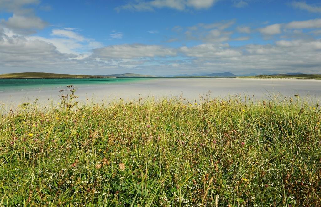 """Il tappeto fiorito detto """"MACHAIR"""" tipico delle isole EBRIDI ESTERNE"""