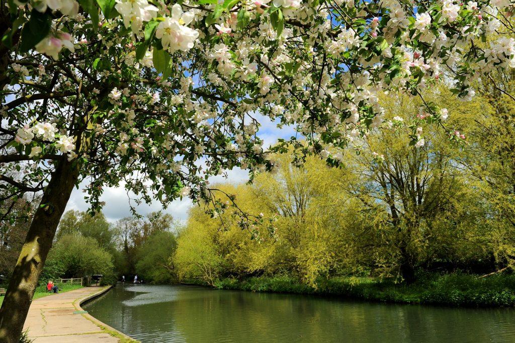 Il percorso è una vera esplosione di fiori e profumi