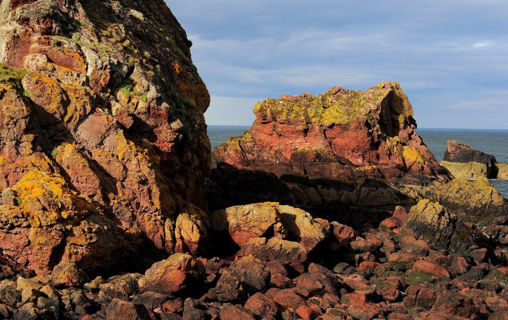 Le formazioni rocciose di ST ABB'S HEAD