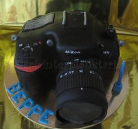 torta nikon d300