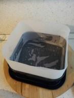 wip torta UNO (1)