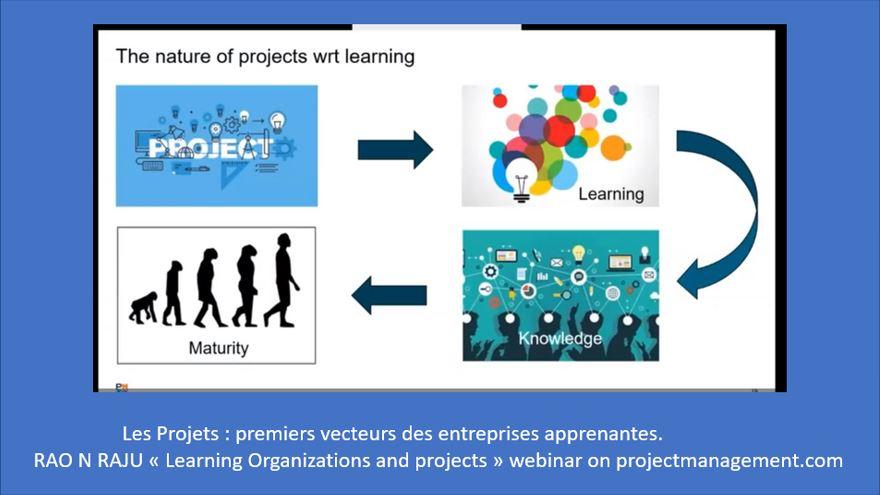 Organisations collaboratives et gestion de projet