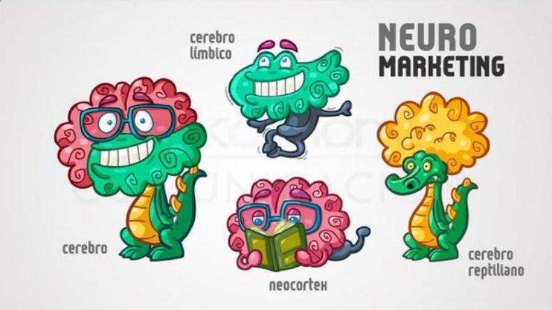 Gatilhos Mentais no Marketing de Rede: Cérebro