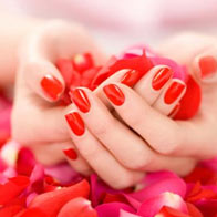 You Will Receive A Thorough Grounding In All Aspects Of The Nail Technician S Role From Learning Basics Anatomy And Physiology Skin Nails