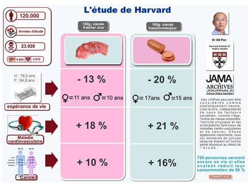 Etude de Harvard sur la consommation de viande
