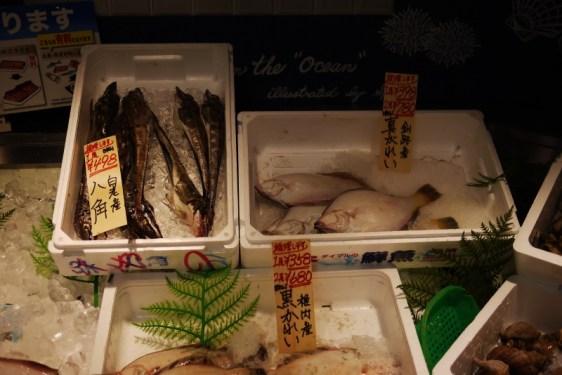 P1180200_poissons