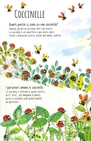 Il libro degli insetti_interno 1